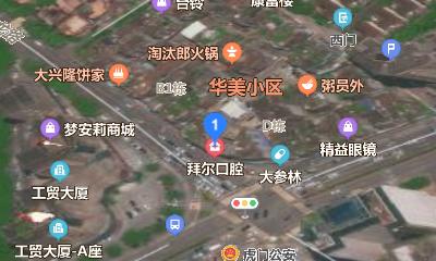 虎门拜尔口腔诊所地址卫星图