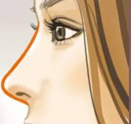 隆个鼻子大概要多少钱呢?