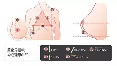 那种假体隆胸效果好?