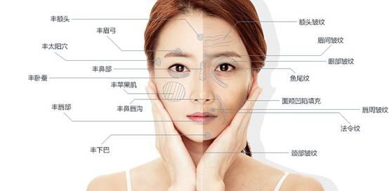 面部自体脂肪填充能维持多久?