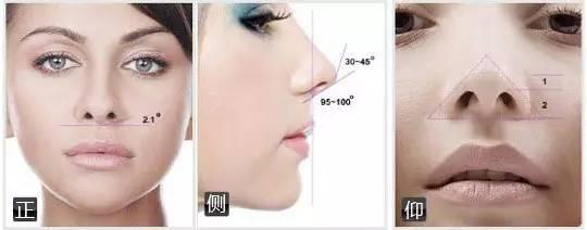 """好看的鼻子对颜值影响有一种鼻子叫""""别人的鼻子"""""""